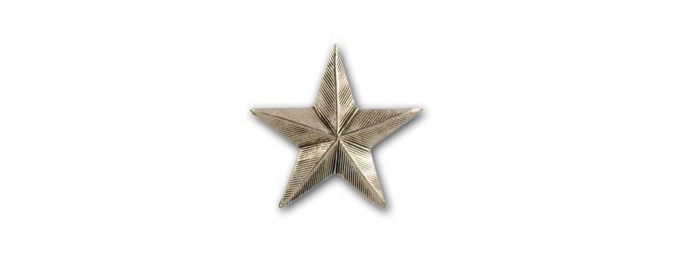 Star Medallion (pewter)